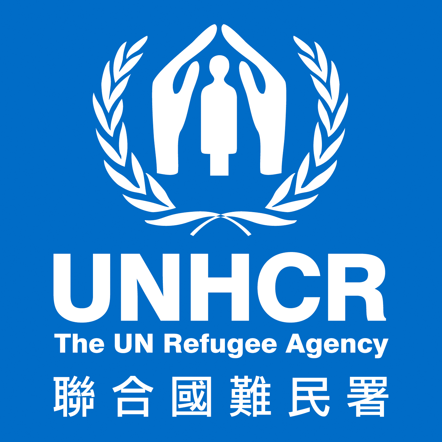 UAE Pledges US$200,000 to UNHCR's 2013 Budget